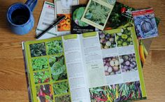 Fresh and simple approach to planning your vegetable garden. Features step by step worksheets and exercises to guide you to a successful season.