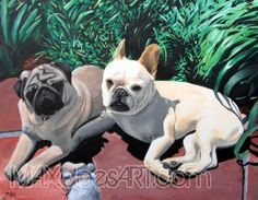 Leo & Lupe pet portrait 2 little dogs that love to lay in the sunshine