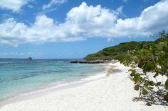 Anse Tarare - Guadeloupe - French Caribbean Island Nude Beach, France, Island Beach, West Indies, Beach Fun, Caribbean, Paradise, Around The Worlds, Wedding Beach