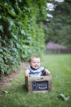 Eight Months Photoshoot - Look Park - Western Massachusetts Photographer - Samantha Murray Photography