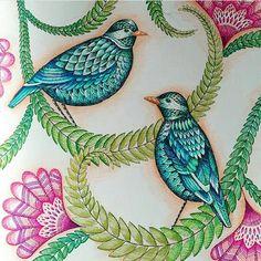 One more beauty from @_i_am_moi_ !!! Mais um desenho lindo da @_i_am_moi_ #milliemarotta #desenhos_e_inspiracoes #illustration #drawingoftheday #florestaencantada