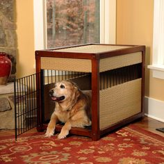Painting of Best and Nice Dog Crates Materials