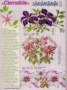 Gallery.ru / Фото #34 - Ботаника-цветы - irislena