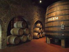PORTO DAY 2:  Port Wine Tasting:  start at the Market, picnic lunch in the park by the Hedge Maze, then off to the Port cellar in Vila Nova de Gaia.  Calem cellars.