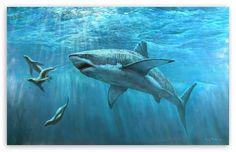 Great White Shark Painting HD desktop wallpaper : High Definition : Mobile