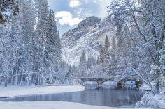 A winter scene with reflection at Yosemite national park, USA © Min Chiu / Shutterstock