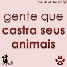 Blogateira: GENTE QUE CASTRA SEUS ANIMAIS