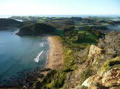 Pataua South Beach, North island, NZ Kites, Happy Things, South Beach, New Zealand, Beaches, Surfing, Pride, Island, Explore