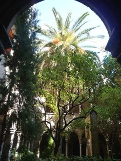 A quiet sanctuary right in the city centre of Barcelona (Santa Anna Church & Cloisters).