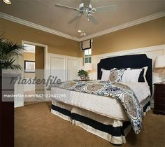 647-02641295em-Master-bedroom-with-wainscoting-and-crown-molding.jpg 450×401 pixels