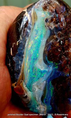 polished Boulder Opal specimen [ March 2017 ].