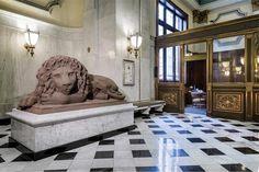 Dollar-Bank-Lion-Interior-Within
