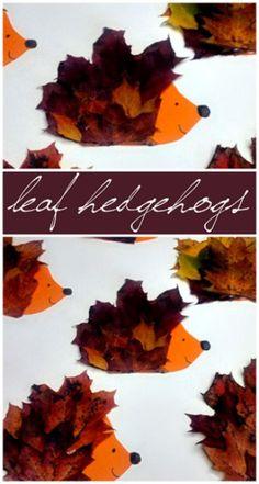 Make a Hedgehog Craft Using Leaves - Crafty Morning
