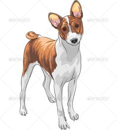 Vector Sketch Hunting Dog Basenji Breed #GraphicRiver Color sketch of the hunting dog Basenji breed. Created: 24September13 GraphicsFilesIncluded: JPGImage #VectorEPS Layered: No MinimumAdobeCSVersion: CS Tags: Sighthound #animal #basenji #breed #brown #curled #cute #dog #drawing #ears #elegant-looking #hound #hunting #illustration #looking #orange #pet #purebred #red #seriously #short-haired #sketch #small #smiling #tail #vector