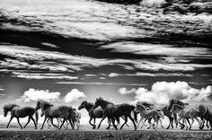 On the long run, por Gunnlaugur Valsson