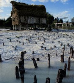 Prehistoric Pile dwellings around the Alps - This serial property of 111 small individual sites encompasses the remains of prehistoric pile-dwelling (or stilt house) settlements in and around the Alps built from around 5000 to 500 B.C. on the edges of lakes, rivers or wetlands