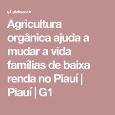 Agricultura orgânica ajuda a mudar a vida famílias de baixa renda no Piauí | Piauí | G1