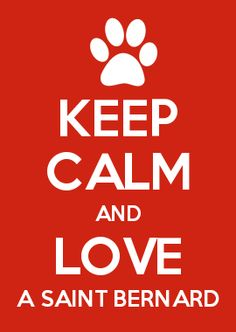 KEEP CALM AND LOVE A SAINT BERNARD