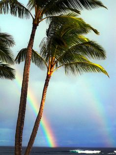 Double rainbow over the ocean with palm trees, hawaii.