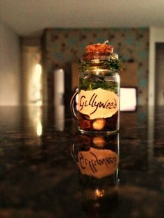 Hey, I found this really awesome Etsy listing at http://www.etsy.com/listing/159337992/miniature-gillyweed-harry-potter