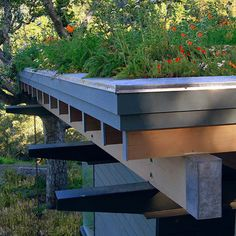 A mix of California poppies (Eschscholzia californica), yarrow (Achillea mellifolium) and other natives makes this intensive green roof right at home in this California garden.