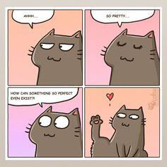 The one about self-esteem | Catsu The Cat