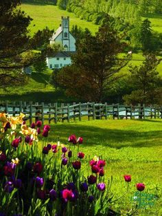 A magical place ~ take me there!  Prince Edward Island off the eastern coast of Canada.