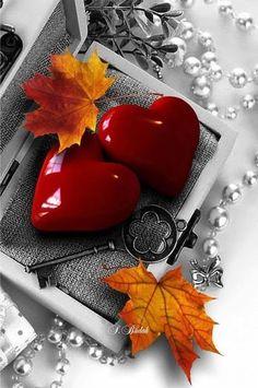 MEU SEGREDO   Quero lhe contar o meu segredo  Eu confio em você  Entrego a chave nas suas mãos  Admire-me  No íntimo dos meus olhos  Profundamente em meu peito  Esta é a chave...  Do meu coração!    MárciaMarko