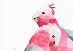 Galah Pink galah Geometric print Original by tinykiwiprints