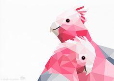Galah Pink galah Geometric print Original by tinykiwiprints