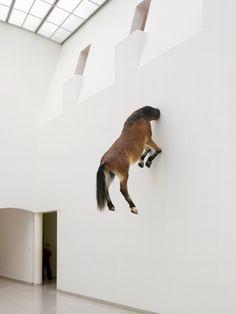 now - punta della dogana - venice - maurizio-cattelan-horse-head-wall-sm Women Artist, Sculptures Céramiques, Famous Sculptures, Robert Rauschenberg, Horse Sculpture, Art Plastique, Art World, Installation Art, Oeuvre D'art