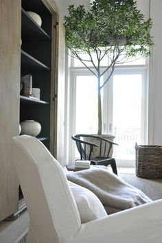 :: Havens South Designs :: loves a sculptural, living tree in a room.