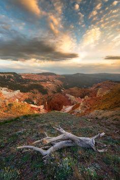 Acperience - Not Bryce Canyon but Cedar Breaks