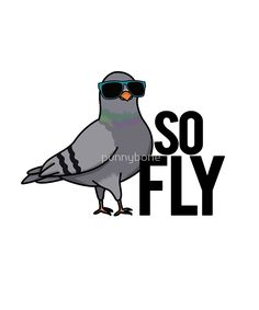 'So Fly Pigeon Animal Pun' Sticker by punnybone Cute Jokes, Cute Puns, Silly Jokes, Animal Puns, Work Puns, Pigeon Funny, Fly Drawing, Punny Puns, Mail Art