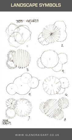 Tree outlines in small clusters for architectural presentation drawings and landscape drawings. Pencil Drawing by Glen Craig.