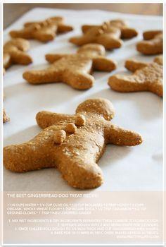 DIY Gingerbread Dog Treats | Pretty Fluffy