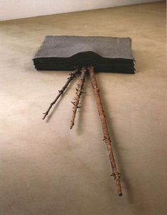 Joseph Beuys. felt and tree parts.