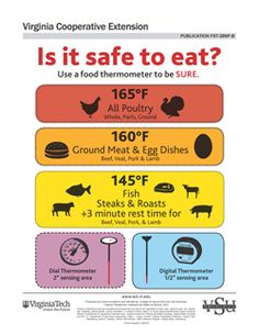 Is it safe to eat? Use a food thermometer to be SURE. - Home - Virginia Cooperative Extension Cooking Tips, Cooking Recipes, Healthy Recipes, Food Handling, High Fat Foods, Good Food, Yummy Food, Cooking Temperatures, Food Safety