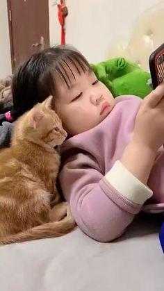 Funny Cute Cats, Cute Baby Cats, Cute Funny Babies, Cute Cat Gif, Cute Cats And Kittens, Cute Little Animals, Cute Funny Animals, Kittens Cutest, Cute Cat Video