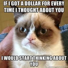 Grumpy Cat. One of the best ones yet.