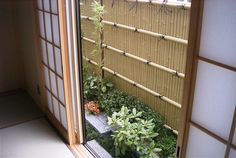 small space Japanese garden bamboo fence