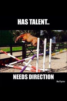 I have ridden so many horses like this!!!