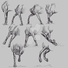 Study - Horse forelegs by Dheelis.deviantart.com on @DeviantArt