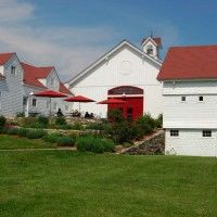Jonathan Edwards Winery in North Stonington, CT ~ amazing local wine, never disappoints :)  Great staff there too.