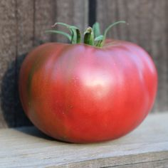 New for 2020 Tomato Purple Boy! A unique heirloom-like hybrid that offers something special to your garden. This beautiful purple tomato ha. Fruit Plants, Tomato Plants, Fruit Trees, Vegan Spinach Artichoke Dip, Chicken Bacon Ranch Pizza, Grow Your Own Food, Raised Garden Beds, Unique Recipes, Strong