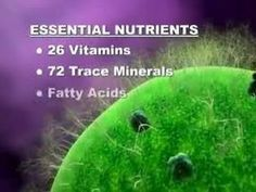 Mannatech's NutriVerus powder provides nutrition from real food and plant sources. Don't settle for synthetic vitamins made from fossil fuels or minerals fro. Health And Nutrition, Health And Wellness, Health Fitness, Holistic Remedies, Food Facts, Nutritional Supplements, Wellness Tips, Vitamins And Minerals, Get Healthy