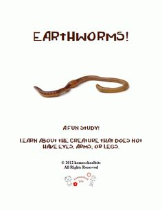 A Fun Study! - This unit is very flexible for lower & higher grades. A Fun Study! Earthworms, Unit Studies, Homeschooling, Teacher, Study, The Unit, Science, Activities, Education