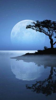 Nada mejor que estar bajo la Luna