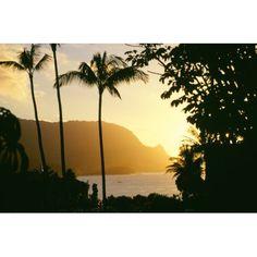 Hawaii Kauai Hanalei Bay Bali Hai Yellow Sunset Through Palm Trees And Vegetation Canvas Art - David Cornwell Design Pics (38 x 24)