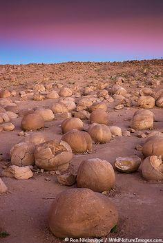 The Pumpkin Patch, Anza-Borrego Desert State Park, California